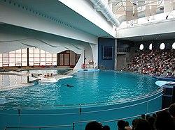 Rodadero Sea Aquarium and Museum