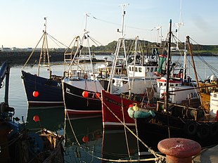 Ardglass Harbour, May 2009