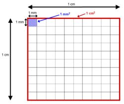 Area wikipedia - 1m2 en cm ...