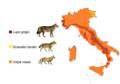 Areale dei canidi italiani.png