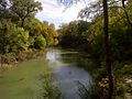 Arlington River Legacy Parks 2010 004.jpg