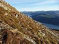 Ascending Beinn na Caillich - geograph.org.uk - 1616085.jpg