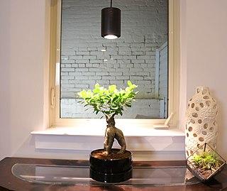 Grow light Lighting to aid plant growth