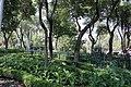 Aspecto del jardín del Carmen Mariana Licón Valdespino 220915 Colonia San Ángel Delegación Álvaro Obregón C.P 01000 Ciudad de México.JPG