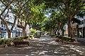 At Santa Cruz de Tenerife 2021 007.jpg