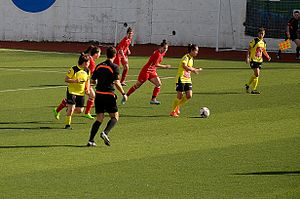 Gazikentspor - Gazikentspor (yellow/black) in the 2014–15 season away match against Ataşehir Belediyespor.