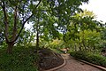 Auburn NSW 2144, Australia - panoramio (67).jpg
