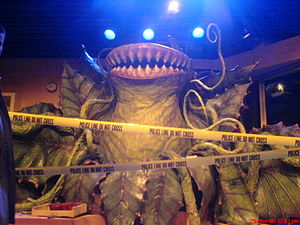 English: Audrey II puppet from the Mernier Cho...