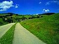 August 2014 St. Peter Schwarzwald - panoramio (10).jpg