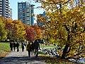 Autumn Scene in Stanley Park - Vancouver - BC - Canada - 17 (37973625871) (2).jpg
