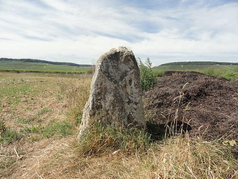 Le menhir de Haute-Borne, vu de l'est, avec en arrière plan la Côte des Blancs.