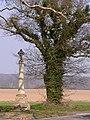 Aylmerton Cross - geograph.org.uk - 383877.jpg