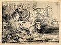B253 Rembrandt.jpg