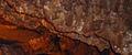 BELUM CAVES-Tadipatri-Dr. Murali Mohan Gurram (35).jpg