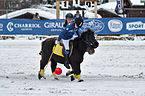 BMW Polo Masters Megève - 20140126 - Démonstration de polo-poney 3.jpg