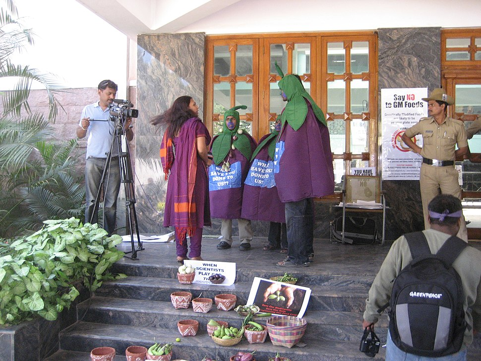 BT Brinjal Protest Bangalore India TV Interview