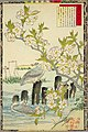 Bairei kachō gafu, Spring 08, cherry blossoms and gulls.jpg