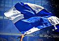Bandeira branquiazul.jpg