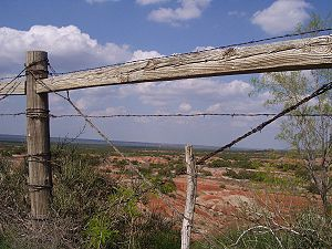 Barbed wire fence in west Texas