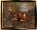 Bartolomeo bimbi, vitella con due teste accasciata.JPG
