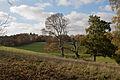 Basildon Park (6320318266).jpg