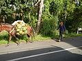 Batangasjf9998 22.JPG