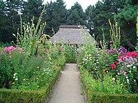 Bauerngarten-Hamburg-Botanischer-Garten.jpg