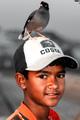 Bd Bird-lover.png