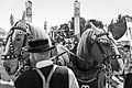Beerhorses Jpg (79837727).jpeg