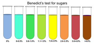 File Benedict S Test For Sugars Png Wikimedia Commons