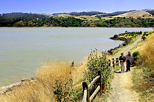 San Francisco Bay Trail - Image: Benicia State Recreation Area Bay Trail