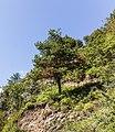 Bergtocht van Val Sinestra naar Ramosch 15-09-2019. (actm.) 23.jpg
