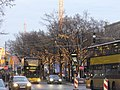 Berlin - Unter den Linden - geo.hlipp.de - 30744.jpg