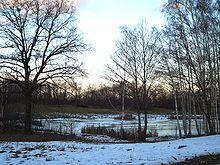 Un laghetto ghiacciato nei pressi di Sala Biellese
