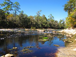 Big Shoals State Forest A protected area in Florida