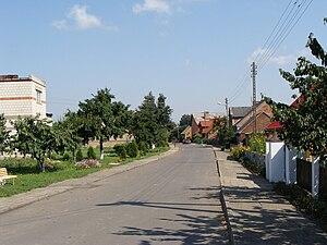 Binkowo - Image: Binkowo wieś