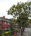 Birchfields Road - geograph.org.uk - 1993956.jpg