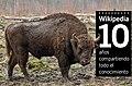 Bison bonasus (Linnaeus 1758)-10 anos wikipedia.jpg