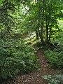 Bloomfield Provincial Park IMG 8262 (1849052328).jpg