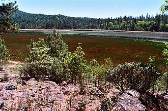 Boggs Lake Ecological Reserve - Boggs Lake / vernal pool