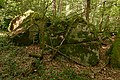 Bois des Roches Souzy-la-Briche n2.jpg