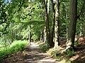 Bomsdorf Gutspark - panoramio - Gottfried Hoffmann -… (5).jpg