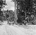 Boslandcreolen bezig met het omzagen van een boom, Bestanddeelnr 252-4868.jpg