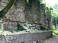 Botanical garden in Zugdidi(30).jpg