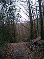 Brabandstaller Weg Ennepetal, 25.12.13 - panoramio (5).jpg