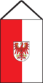 Brandenburg HzV 2007 Muster 5.png