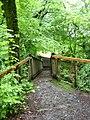 Bridge at start of Torrent Walk - geograph.org.uk - 506470.jpg