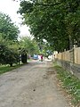 Bridleway - Victoria Road - geograph.org.uk - 1501070.jpg