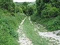 Bridleway to Maplescombe Lane - geograph.org.uk - 1315001.jpg