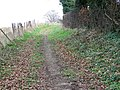 Bridleway to Winterbourne Earls - geograph.org.uk - 1180067.jpg